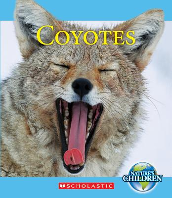 Coyotes By Zeiger, Jennifer